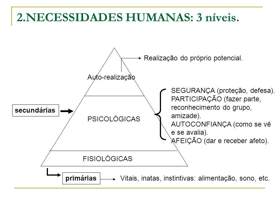 2.NECESSIDADES HUMANAS: 3 níveis. primárias FISIOLÓGICAS Vitais, inatas, instintivas: alimentação, sono, etc. PSICOLÓGICAS SEGURANÇA (proteção, defesa