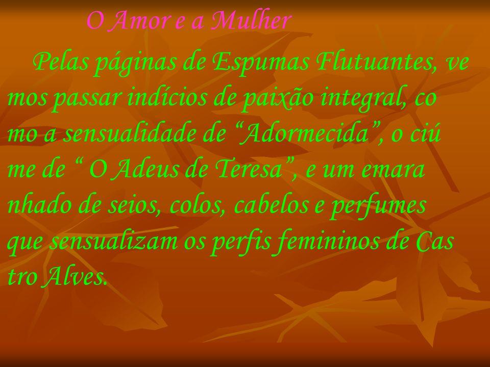 A morte Em 6 de julho de 1871, Antônio de Castro Alves morreu, com apenas 24 anos.