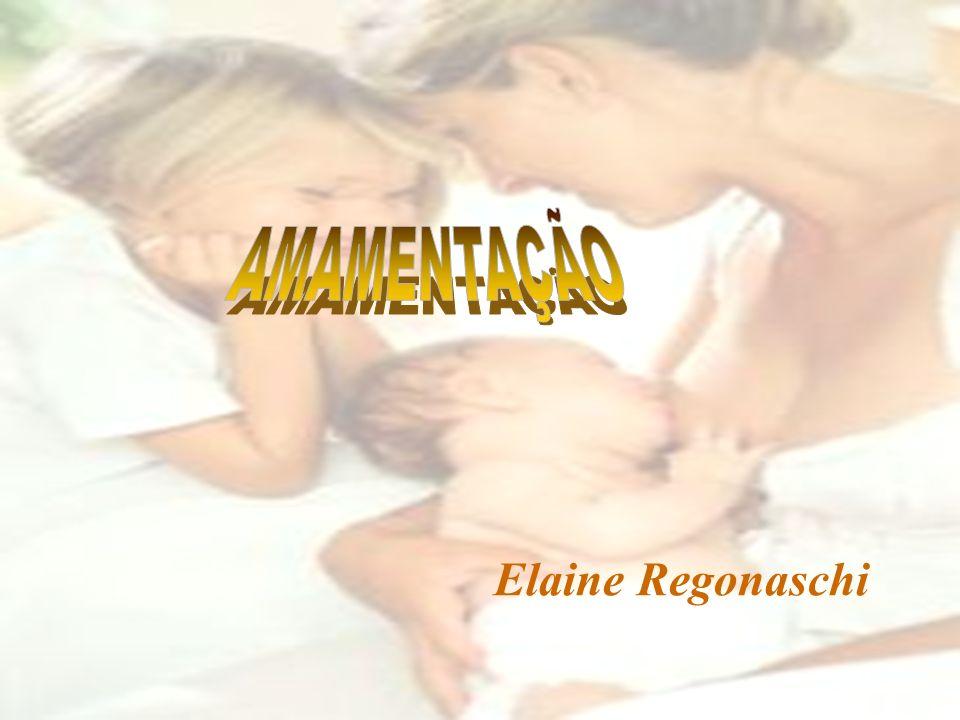 Elaine Regonaschi