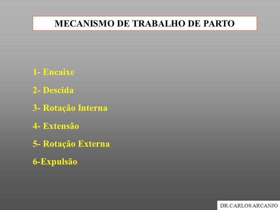 MECANISMO DE TRABALHO DE PARTO DR.CARLOS ARCANJO 1- Encaixe 2- Descida 3- Rotação Interna 4- Extensão 5- Rotação Externa 6-Expulsão