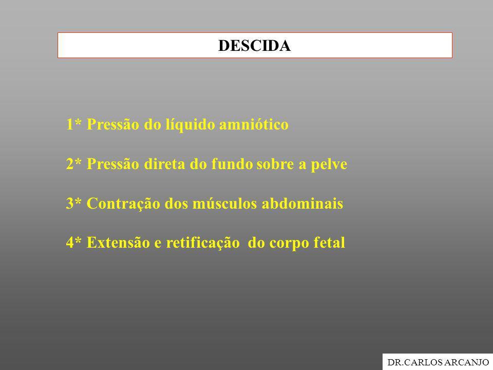 DESCIDA DR.CARLOS ARCANJO 1* Pressão do líquido amniótico 2* Pressão direta do fundo sobre a pelve 3* Contração dos músculos abdominais 4* Extensão e