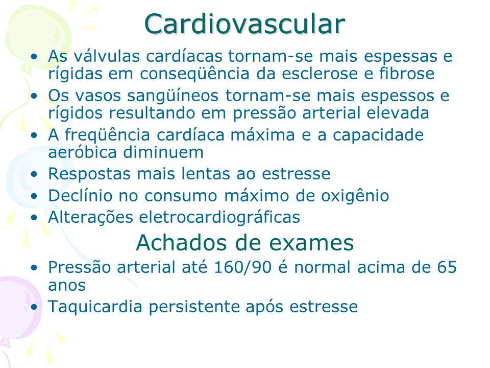 Cardiovascular As válvulas cardíacas tornam-se mais espessas e rígidas em conseqüência da esclerose e fibrose Os vasos sangüíneos tornam-se mais espes