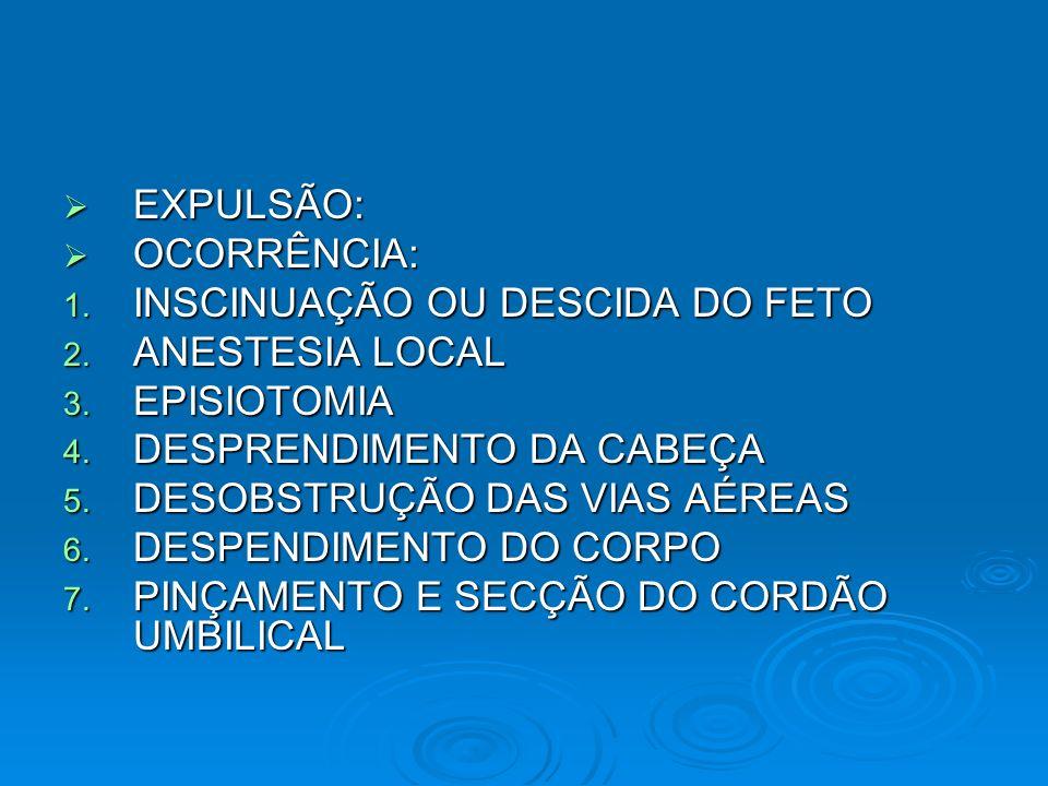 EXPULSÃO: EXPULSÃO: OCORRÊNCIA: OCORRÊNCIA: 1. INSCINUAÇÃO OU DESCIDA DO FETO 2. ANESTESIA LOCAL 3. EPISIOTOMIA 4. DESPRENDIMENTO DA CABEÇA 5. DESOBST