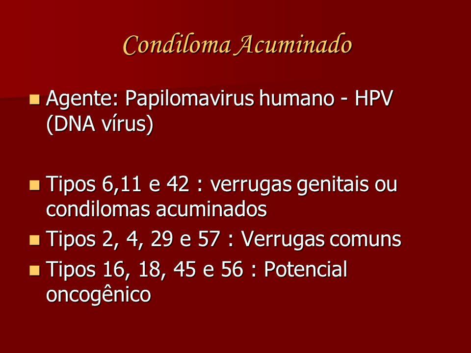 Agente: Papilomavirus humano - HPV (DNA vírus) Agente: Papilomavirus humano - HPV (DNA vírus) Tipos 6,11 e 42 : verrugas genitais ou condilomas acumin