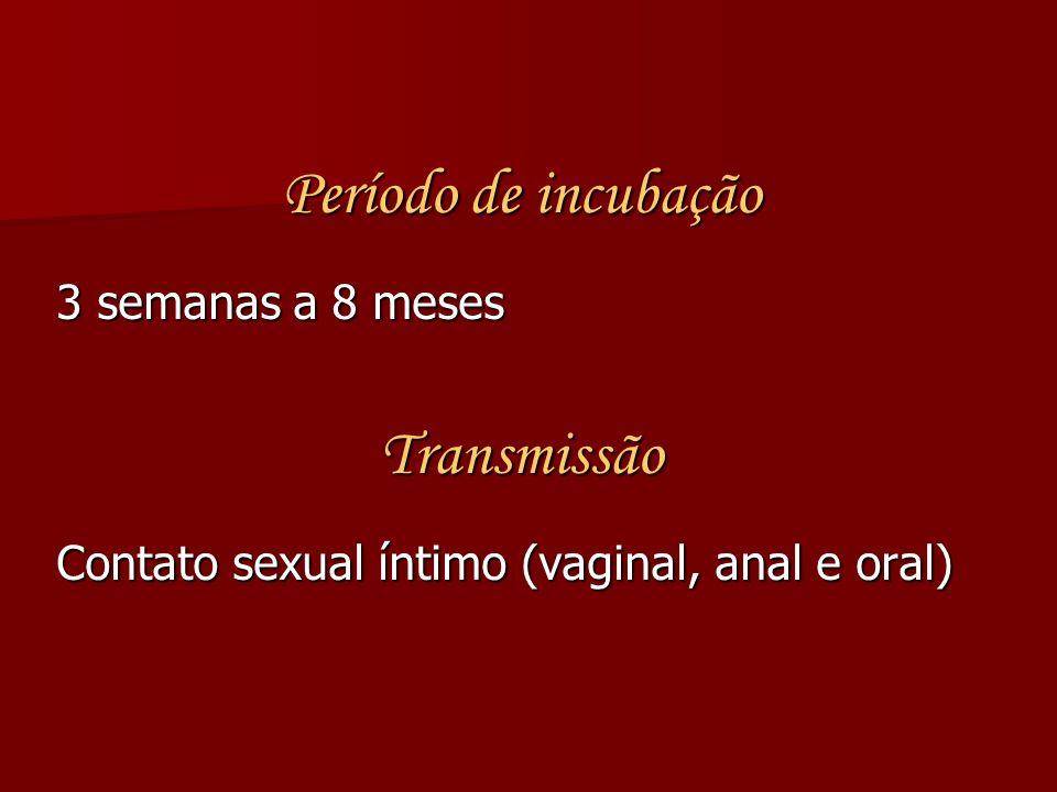 Período de incubação 3 semanas a 8 meses Transmissão Contato sexual íntimo (vaginal, anal e oral)