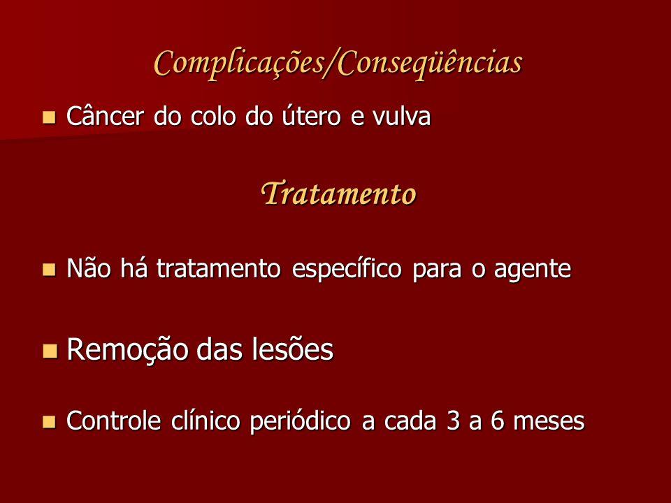 Complicações/Conseqüências Câncer do colo do útero e vulva Câncer do colo do útero e vulvaTratamento Não há tratamento específico para o agente Não há