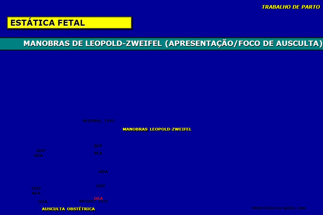 MANOBRAS DE LEOPOLD-ZWEIFEL (APRESENTAÇÃO/FOCO DE AUSCULTA) ESTÁTICA FETAL SEP SEA ADA OEP OEA ODA AEA ODP SDA SDP BRIQUET, 1939 REZENDE, 1995 MANOBRA