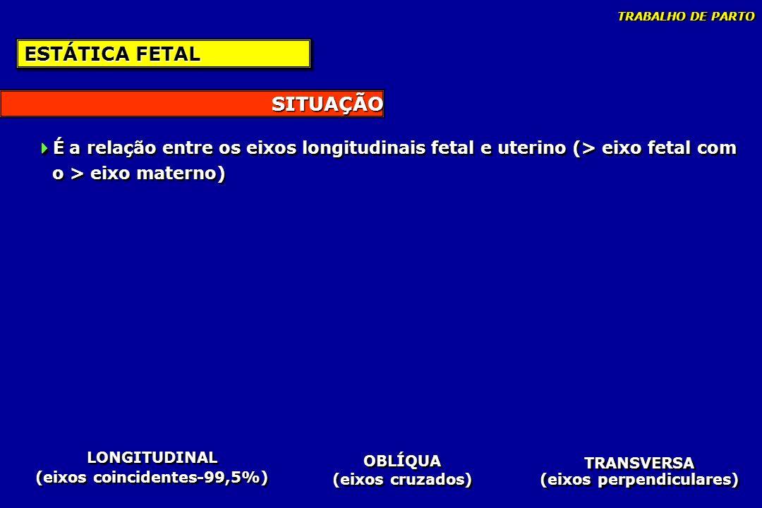 SITUAÇÃO ESTÁTICA FETAL É a relação entre os eixos longitudinais fetal e uterino (> eixo fetal com o > eixo materno) É a relação entre os eixos longit