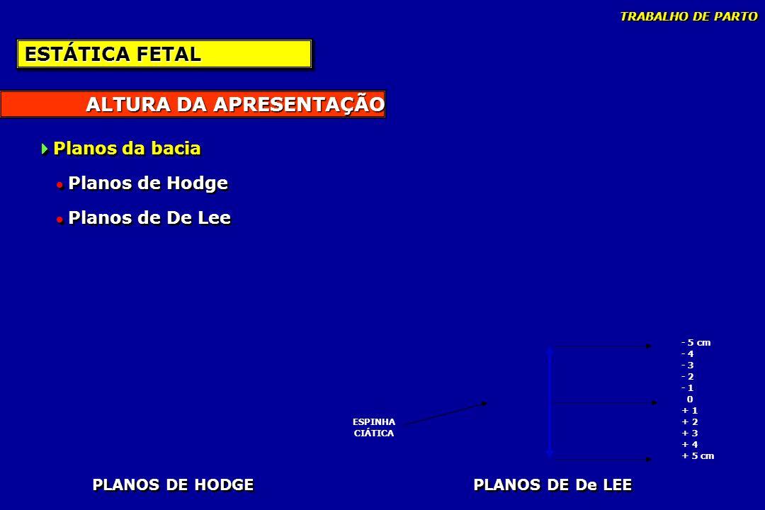 ALTURA DA APRESENTAÇÃO ESTÁTICA FETAL Planos da bacia Planos de Hodge Planos de De Lee Planos da bacia Planos de Hodge Planos de De Lee PLANOS DE HODG