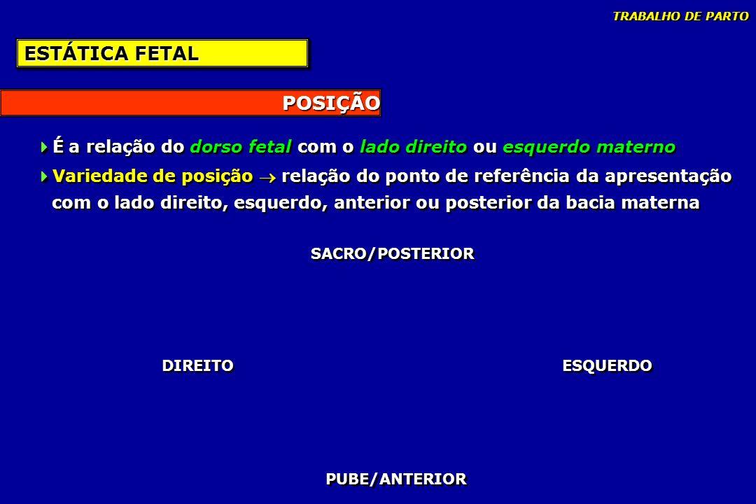 POSIÇÃO ESTÁTICA FETAL É a relação do dorso fetal com o lado direito ou esquerdo materno Variedade de posição relação do ponto de referência da aprese