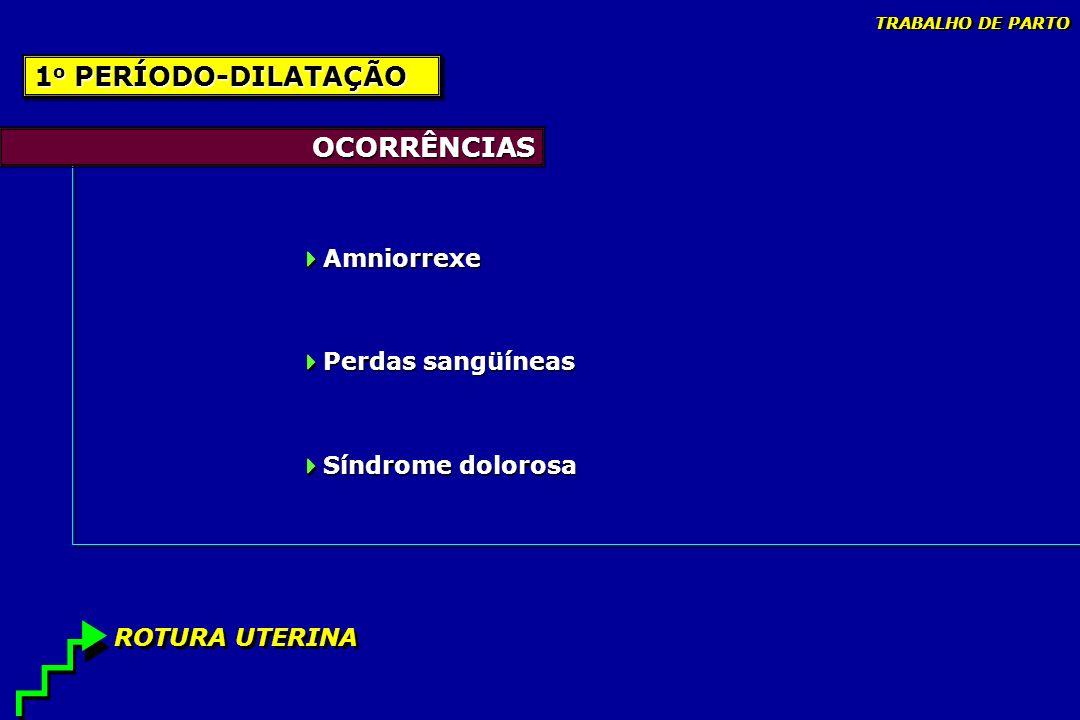 OCORRÊNCIAS Amniorrexe Perdas sangüíneas Síndrome dolorosa Amniorrexe Perdas sangüíneas Síndrome dolorosa 1 o PERÍODO-DILATAÇÃO ROTURA UTERINA TRABALH