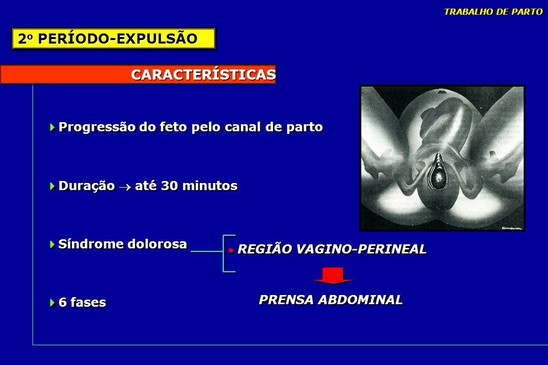 CARACTERÍSTICAS Progressão do feto pelo canal de parto Duração até 30 minutos Síndrome dolorosa 6 fases Progressão do feto pelo canal de parto Duração