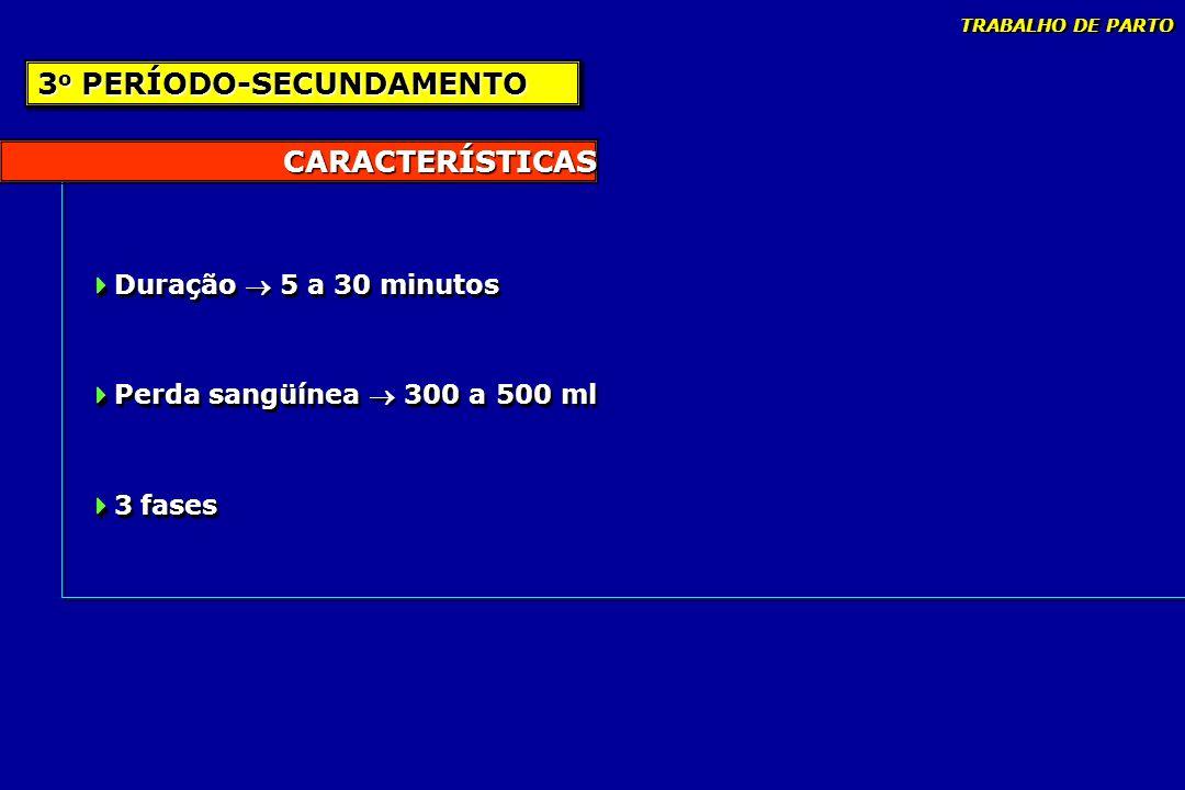 CARACTERÍSTICAS Duração 5 a 30 minutos Perda sangüínea 300 a 500 ml 3 fases Duração 5 a 30 minutos Perda sangüínea 300 a 500 ml 3 fases 3 o PERÍODO-SE