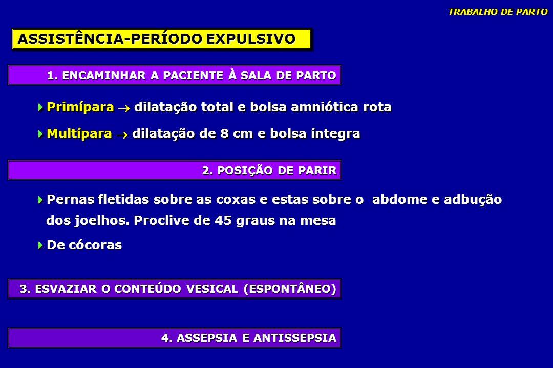 4. ASSEPSIA E ANTISSEPSIA 3. ESVAZIAR O CONTEÚDO VESICAL (ESPONTÂNEO) 2. POSIÇÃO DE PARIR 1. ENCAMINHAR A PACIENTE À SALA DE PARTO ASSISTÊNCIA-PERÍODO