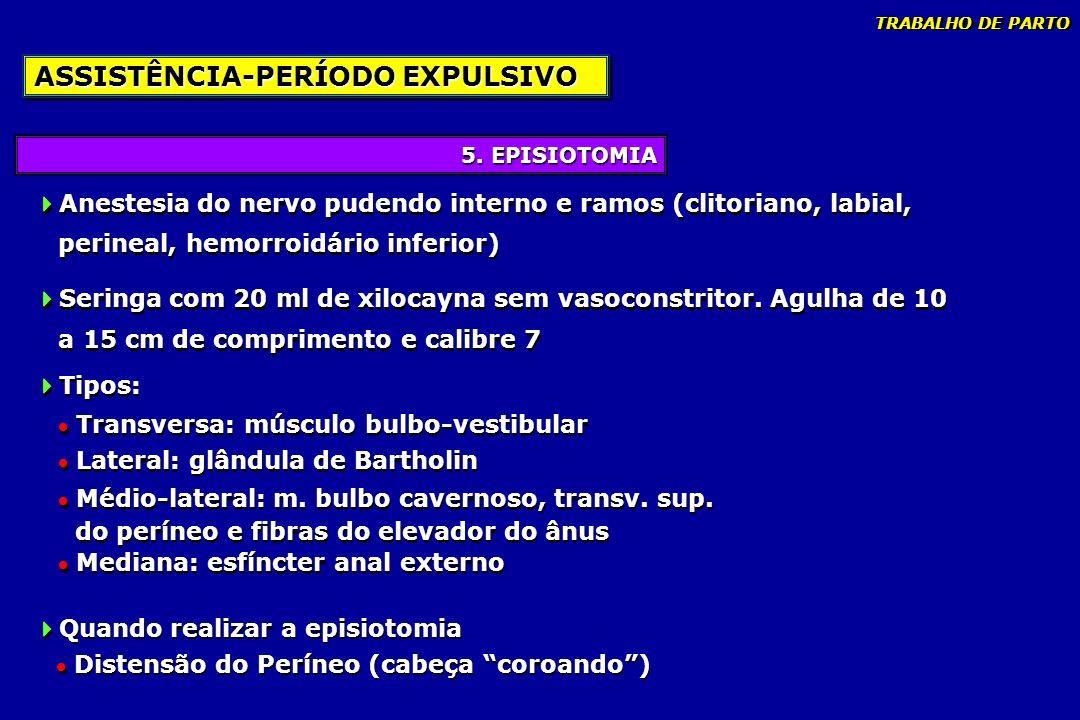 5. EPISIOTOMIA ASSISTÊNCIA-PERÍODO EXPULSIVO Anestesia do nervo pudendo interno e ramos (clitoriano, labial, perineal, hemorroidário inferior) Seringa