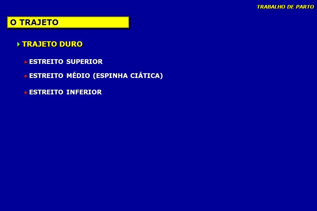O TRAJETO TRAJETO DURO ESTREITO SUPERIOR ESTREITO MÉDIO (ESPINHA CIÁTICA) ESTREITO INFERIOR TRABALHO DE PARTO