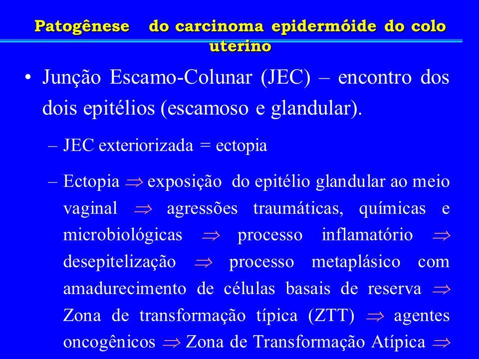 Junção Escamo-Colunar (JEC) – encontro dos dois epitélios (escamoso e glandular). –JEC exteriorizada = ectopia –Ectopia exposição do epitélio glandula