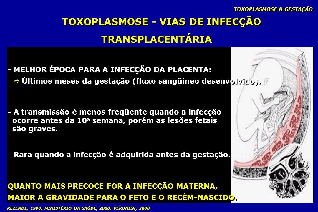 TOXOPLASMOSE & GESTAÇÃO REZENDE, 1998; MINISTÉRIO DA SAÚDE, 2000; VERONESI, 2000 TOXOPLASMOSE - VIAS DE INFECÇÃO TRANSPLACENTÁRIA - MELHOR ÉPOCA PARA