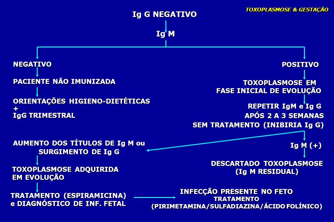 TOXOPLASMOSE & GESTAÇÃO Ig G NEGATIVO NEGATIVO POSITIVO TOXOPLASMOSE EM FASE INICIAL DE EVOLUÇÃO TOXOPLASMOSE EM FASE INICIAL DE EVOLUÇÃO PACIENTE NÃO