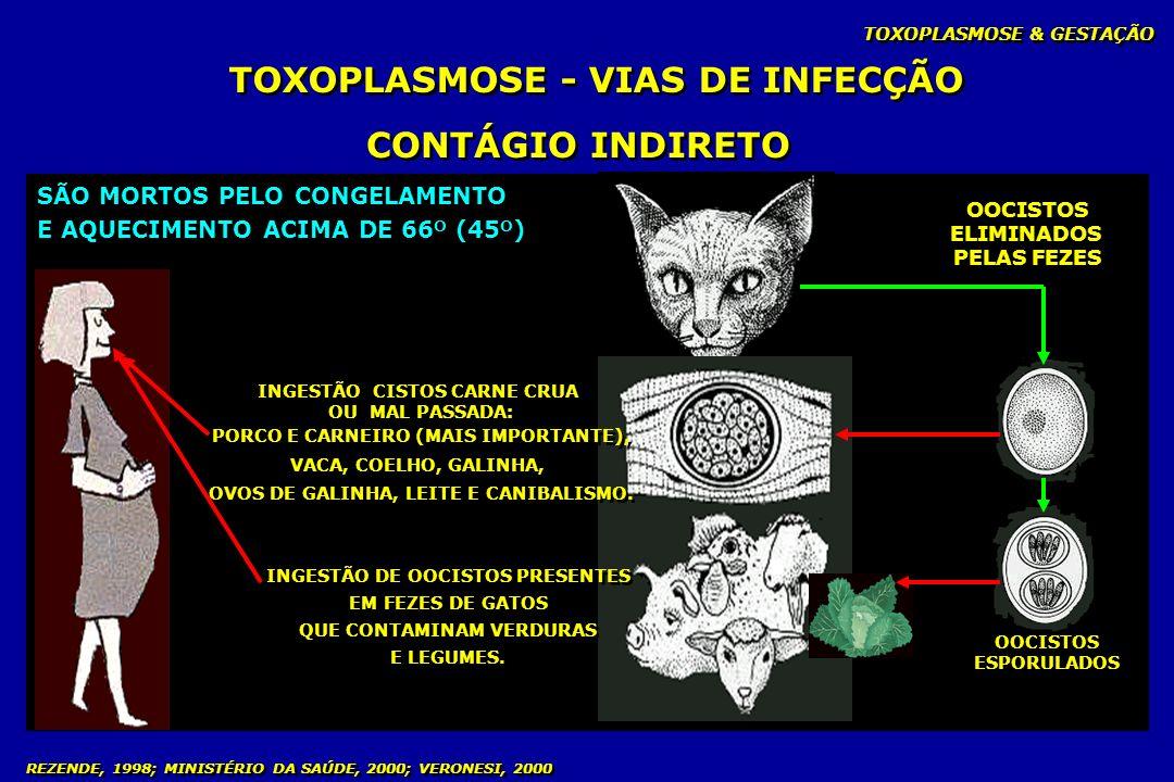 TOXOPLASMOSE & GESTAÇÃO REZENDE, 1998; MINISTÉRIO DA SAÚDE, 2000; VERONESI, 2000 TOXOPLASMOSE - VIAS DE INFECÇÃO CONTÁGIO INDIRETO OOCISTOS ELIMINADOS