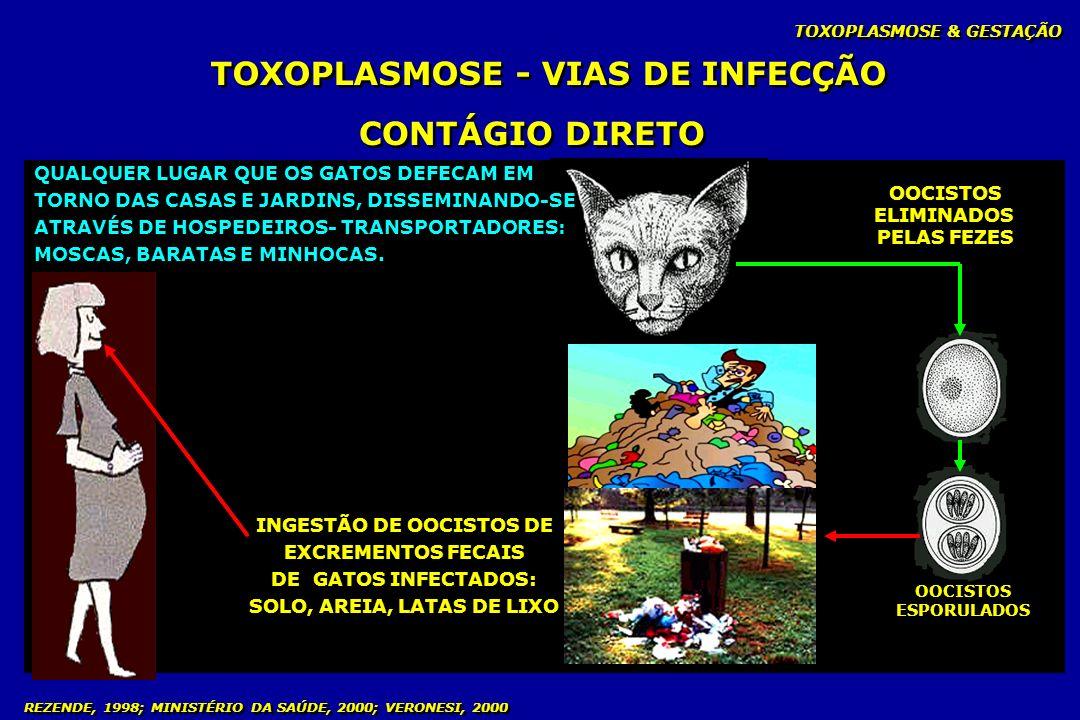 TOXOPLASMOSE & GESTAÇÃO REZENDE, 1998; MINISTÉRIO DA SAÚDE, 2000; VERONESI, 2000 TOXOPLASMOSE - VIAS DE INFECÇÃO CONTÁGIO DIRETO OOCISTOS ELIMINADOS P