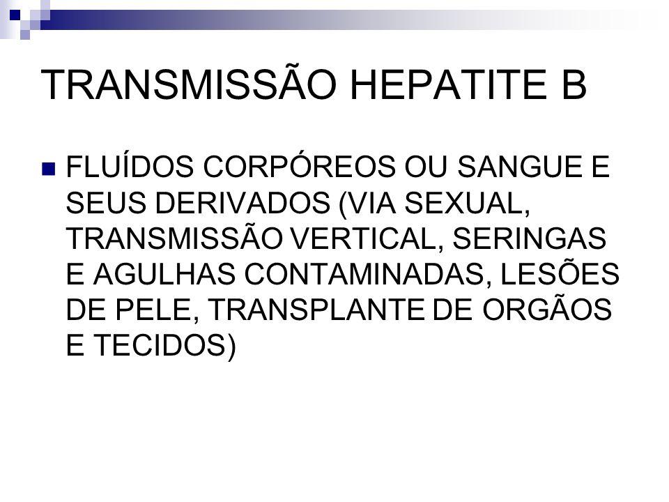 TRANSMISSÃO HEPATITE B FLUÍDOS CORPÓREOS OU SANGUE E SEUS DERIVADOS (VIA SEXUAL, TRANSMISSÃO VERTICAL, SERINGAS E AGULHAS CONTAMINADAS, LESÕES DE PELE