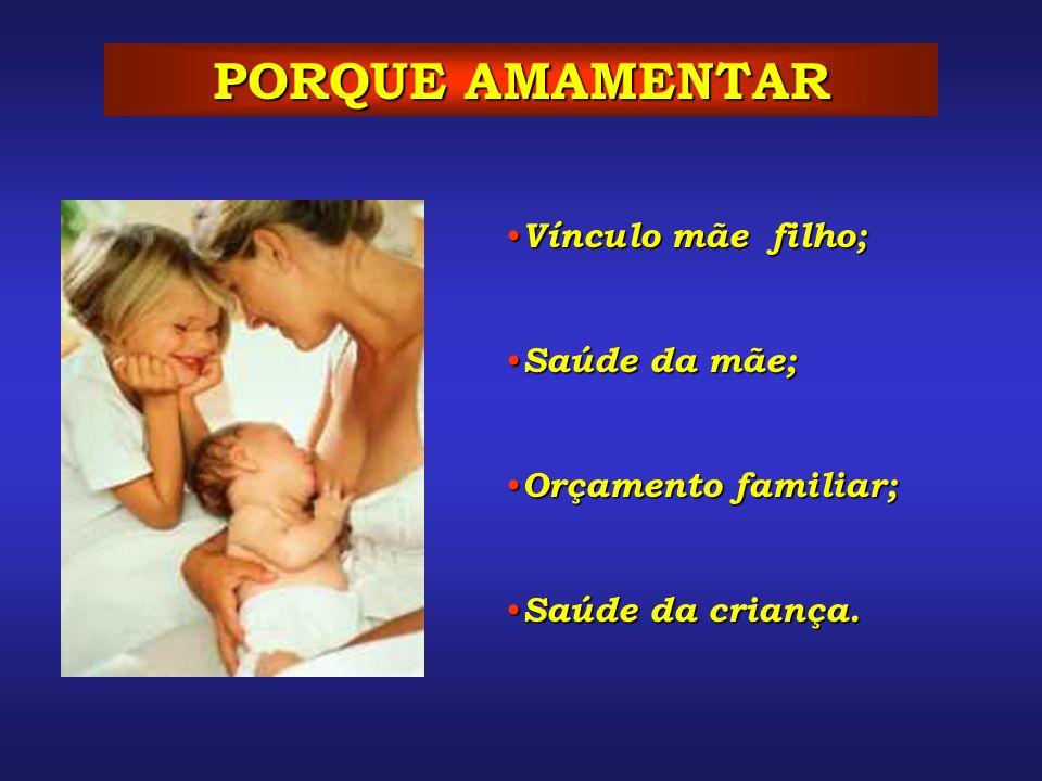PORQUE AMAMENTAR Vínculo mãe filho; Vínculo mãe filho; Saúde da mãe; Saúde da mãe; Orçamento familiar; Orçamento familiar; Saúde da criança. Saúde da