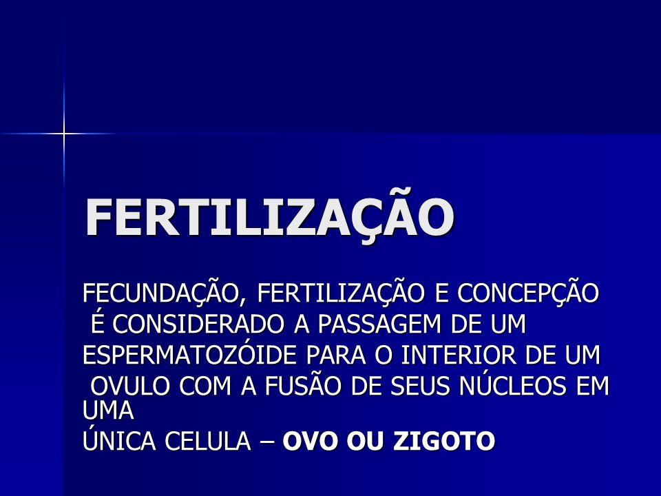 4.PROTEÇÃO CONTRA PRESSÃO EXTERNA 5. MANTEM TEMPERATURA UNIFORME 6.