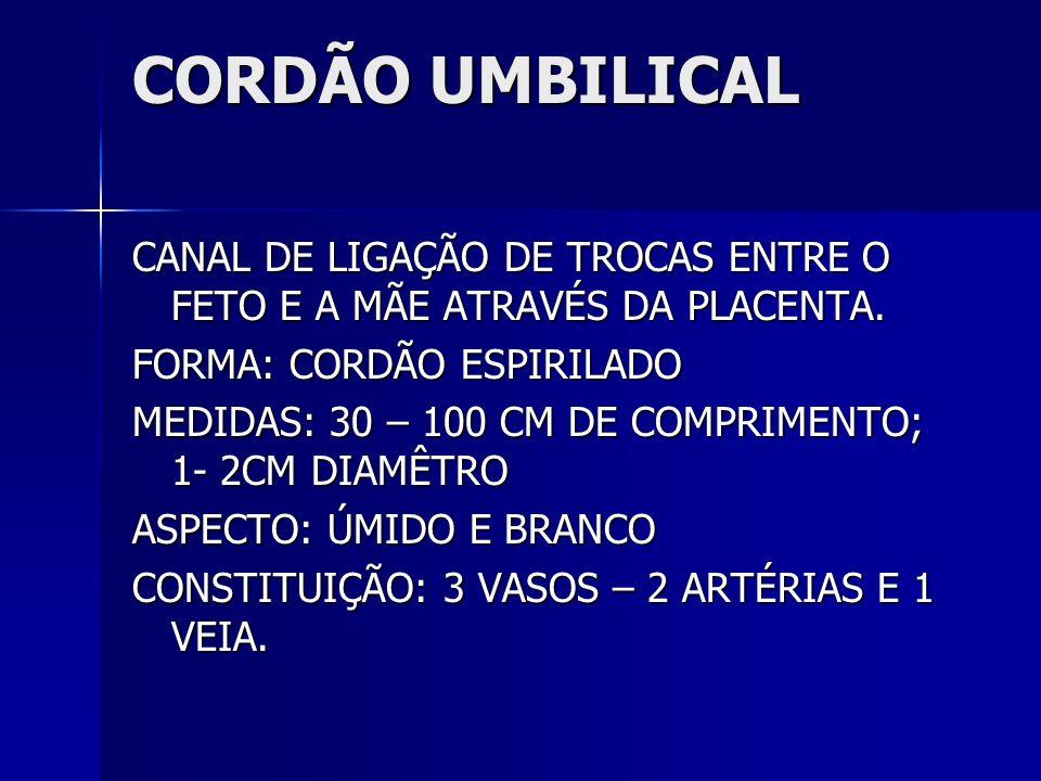 CORDÃO UMBILICAL CANAL DE LIGAÇÃO DE TROCAS ENTRE O FETO E A MÃE ATRAVÉS DA PLACENTA. FORMA: CORDÃO ESPIRILADO MEDIDAS: 30 – 100 CM DE COMPRIMENTO; 1-