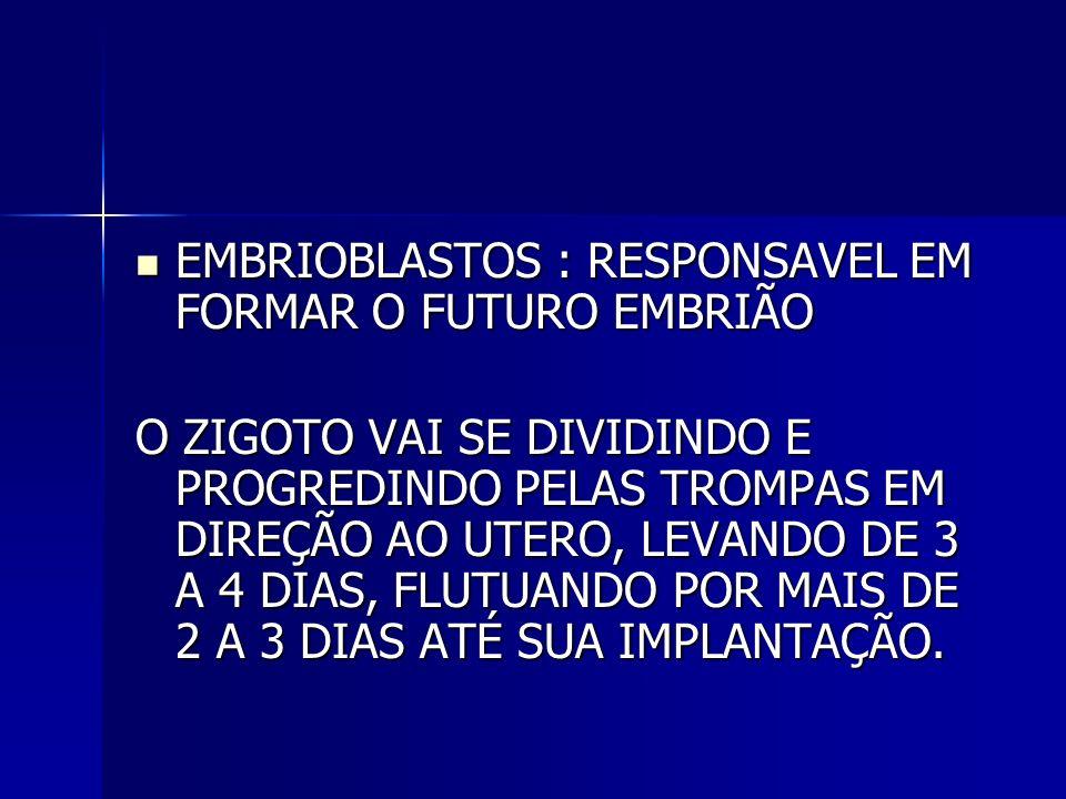 98% - AGUA 98% - AGUA 12% - SÓLIDO – CELULAS DESCAMADAS, MATERIAL SEBÁCEO, LANUGEM, VERNIX CASEOSO.