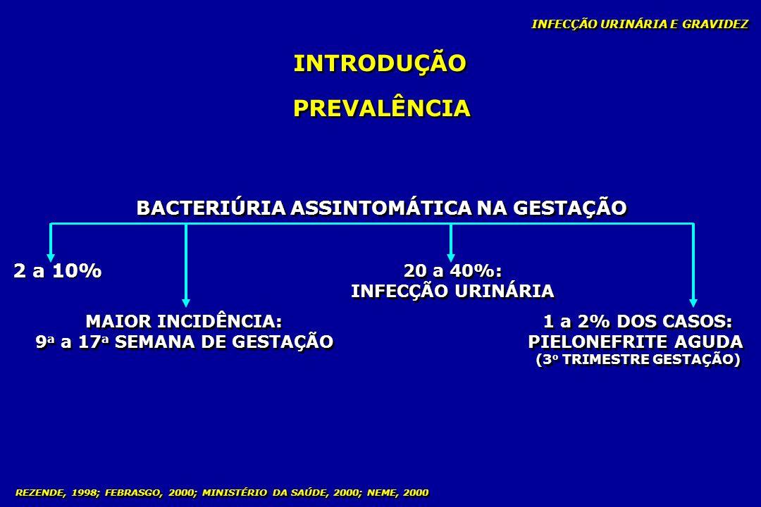 INFECÇÃO URINÁRIA E GRAVIDEZ INTRODUÇÃO PREVALÊNCIA 2 a 10% BACTERIÚRIA ASSINTOMÁTICA NA GESTAÇÃO MAIOR INCIDÊNCIA: 9 a a 17 a SEMANA DE GESTAÇÃO MAIO