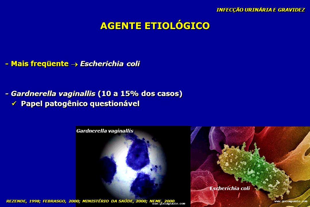 INFECÇÃO URINÁRIA E GRAVIDEZ AGENTE ETIOLÓGICO - Mais freqüente Escherichia coli - Gardnerella vaginallis (10 a 15% dos casos) Papel patogênico questi
