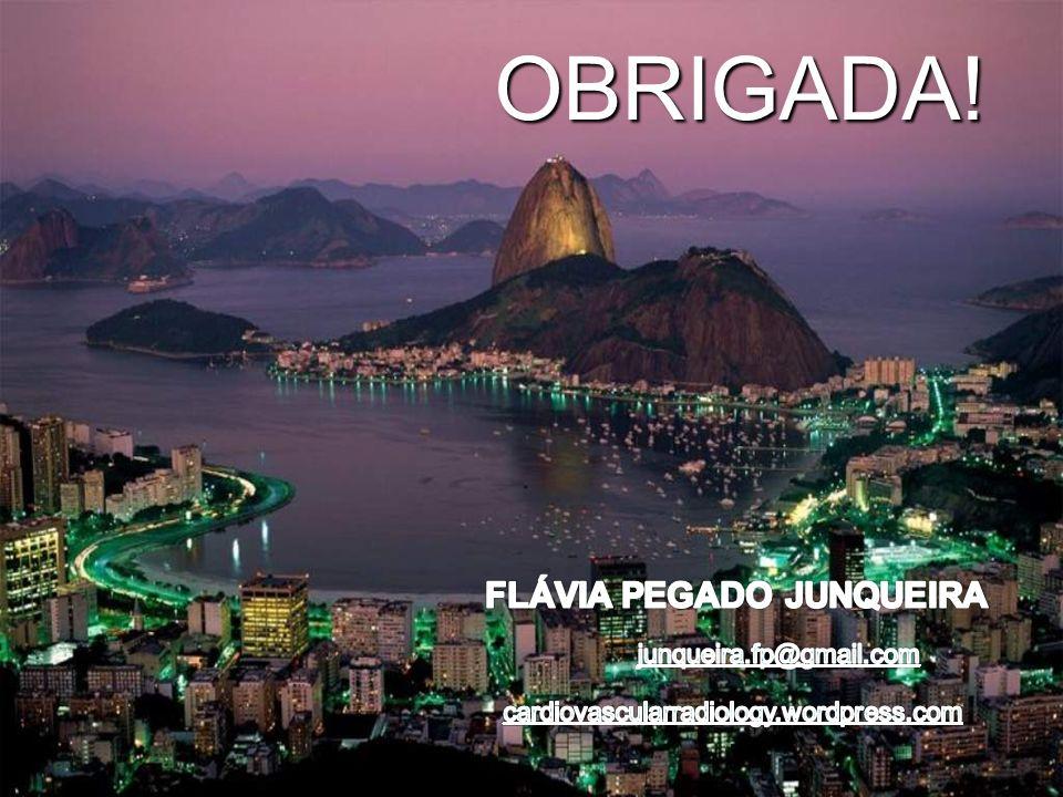 2012 Flávia P. Junqueira OBRIGADA!