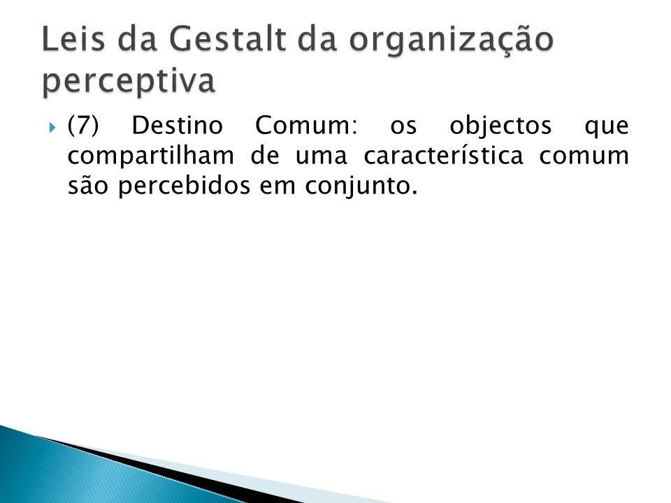 (7) Destino Comum: os objectos que compartilham de uma característica comum são percebidos em conjunto.