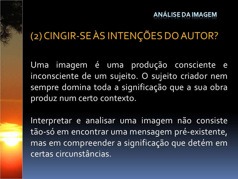 Uma imagem é uma produção consciente e inconsciente de um sujeito. O sujeito criador nem sempre domina toda a significação que a sua obra produz num c