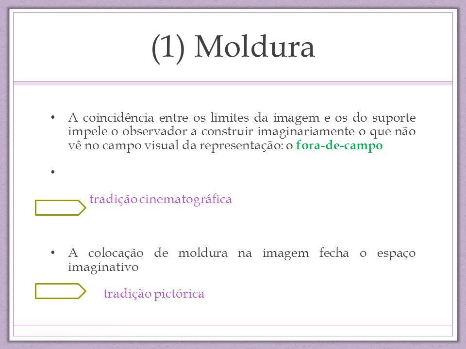 (1) Moldura A coincidência entre os limites da imagem e os do suporte impele o observador a construir imaginariamente o que não vê no campo visual da