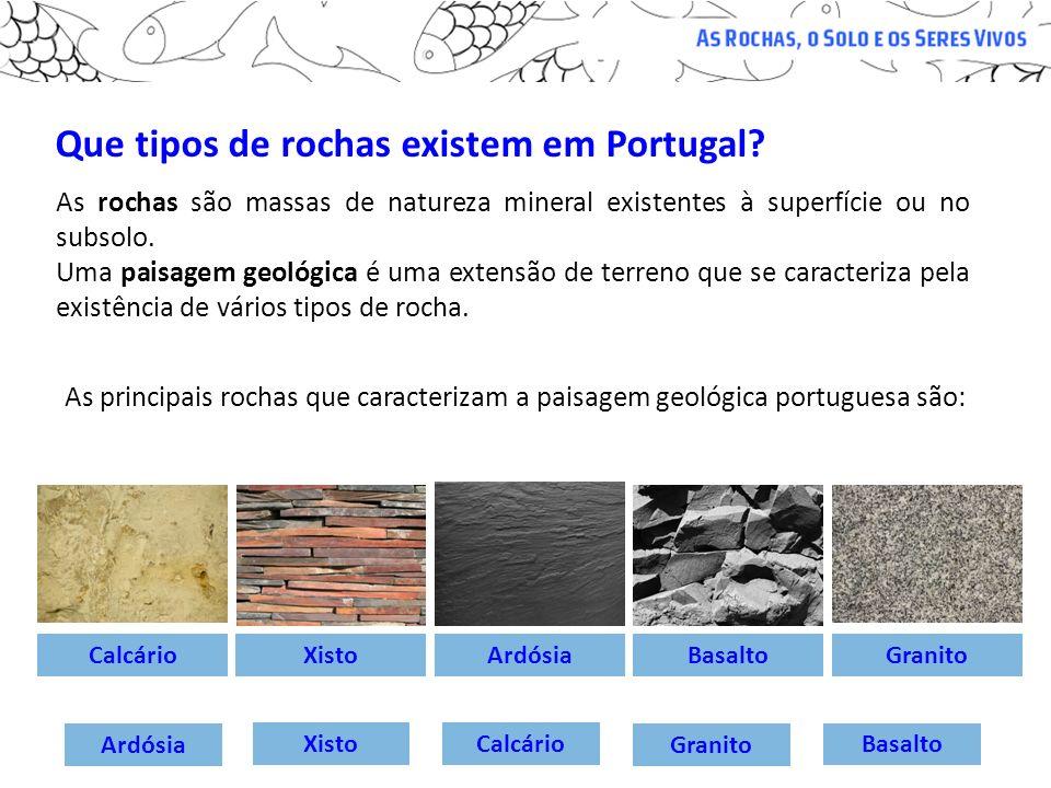 Que tipos de rochas existem em Portugal? As rochas são massas de natureza mineral existentes à superfície ou no subsolo. Uma paisagem geológica é uma