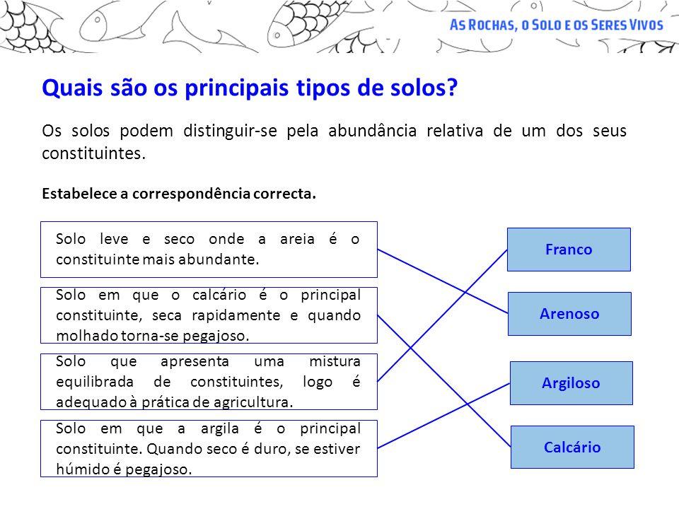 Quais são os principais tipos de solos? Os solos podem distinguir-se pela abundância relativa de um dos seus constituintes. Arenoso Calcário Solo em q