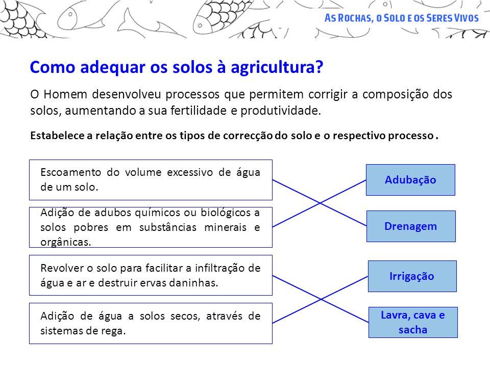 Como adequar os solos à agricultura? O Homem desenvolveu processos que permitem corrigir a composição dos solos, aumentando a sua fertilidade e produt