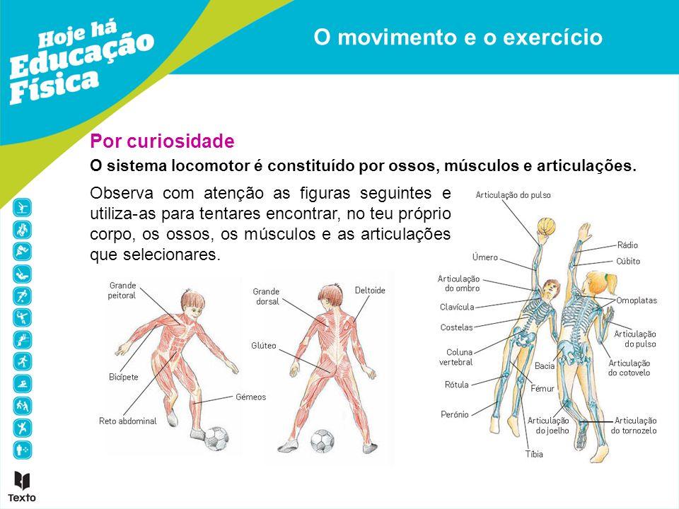 Por curiosidade O sistema locomotor é constituído por ossos, músculos e articulações. O movimento e o exercício Observa com atenção as figuras seguint