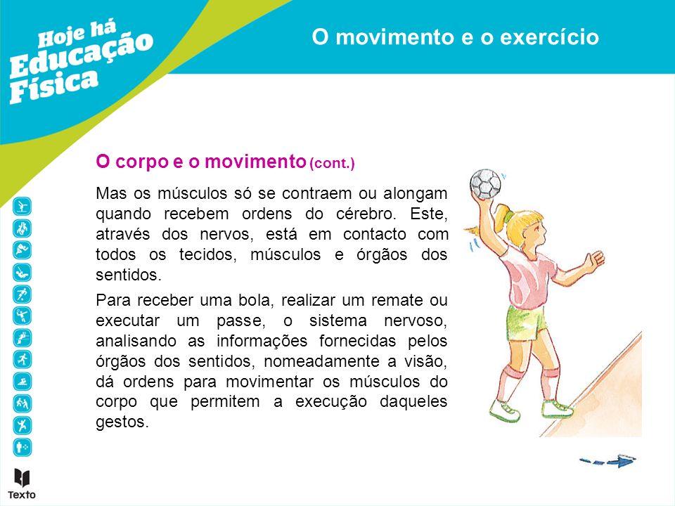 O corpo e o movimento (cont.) Mas os músculos só se contraem ou alongam quando recebem ordens do cérebro. Este, através dos nervos, está em contacto c