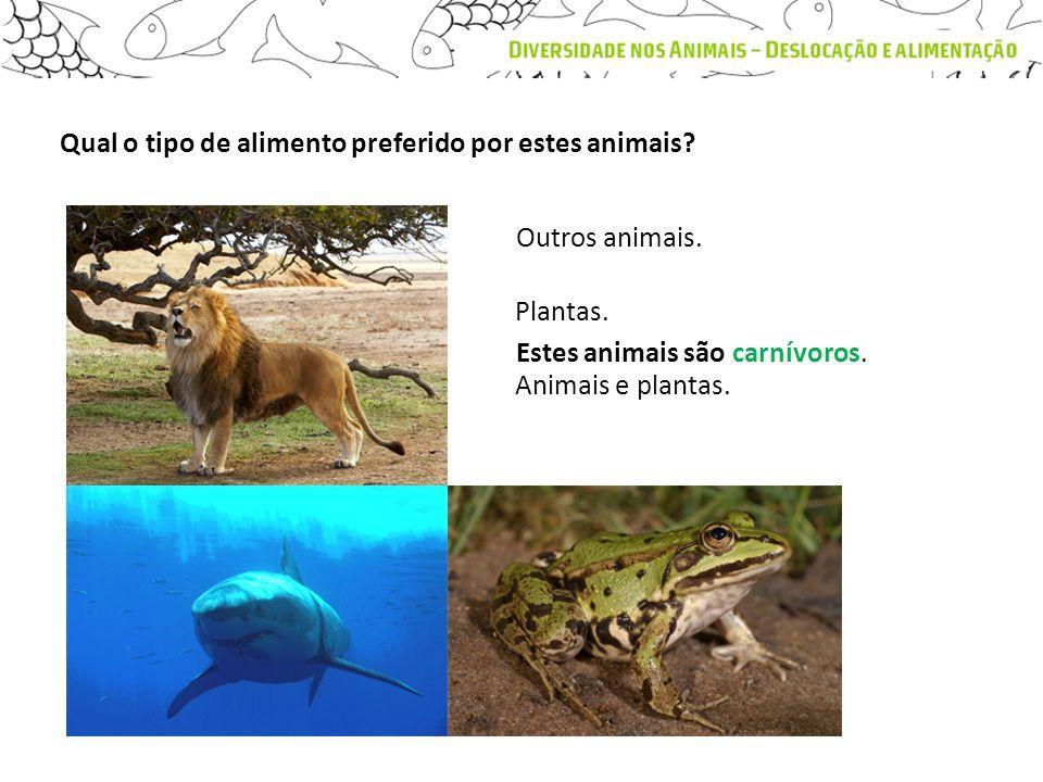 Qual o tipo de alimento preferido por estes animais? Estes animais são carnívoros. Outros animais. Plantas. Animais e plantas.