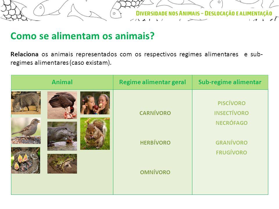 Relaciona os animais representados com os respectivos regimes alimentares e sub- regimes alimentares (caso existam). Animal Regime alimentar geralSub-
