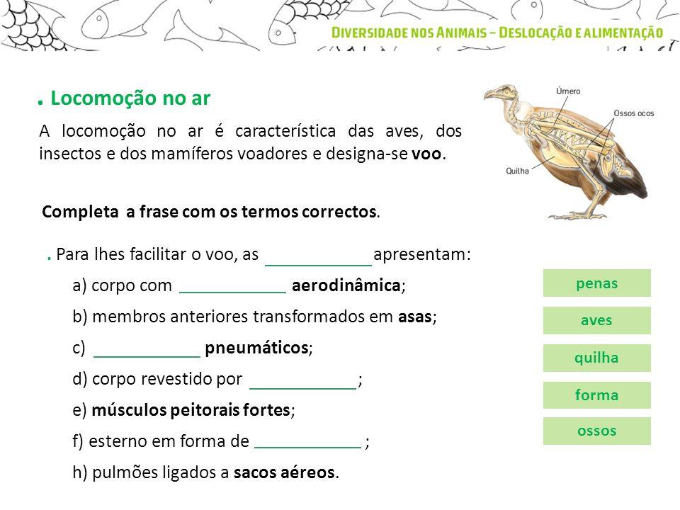 . Locomoção no ar A locomoção no ar é característica das aves, dos insectos e dos mamíferos voadores e designa-se voo.. Para lhes facilitar o voo, as