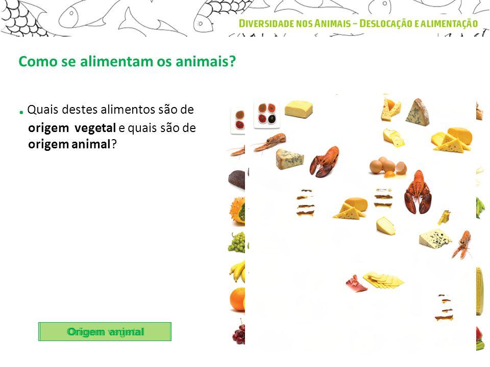 . Quais destes alimentos são de origem vegetal e quais são de origem animal? Origem vegetal Origem animal Como se alimentam os animais?