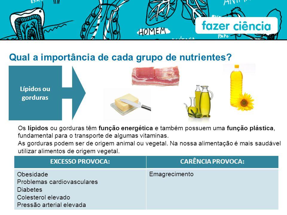 Qual a importância de cada grupo de nutrientes? Os lípidos ou gorduras têm função energética e também possuem uma função plástica, fundamental para o