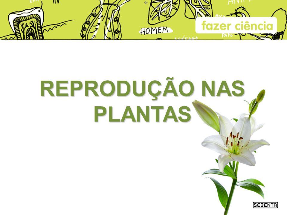 REPRODUÇÃO NAS PLANTAS