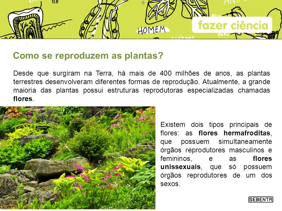 Como se reproduzem as plantas? Desde que surgiram na Terra, há mais de 400 milhões de anos, as plantas terrestres desenvolveram diferentes formas de r