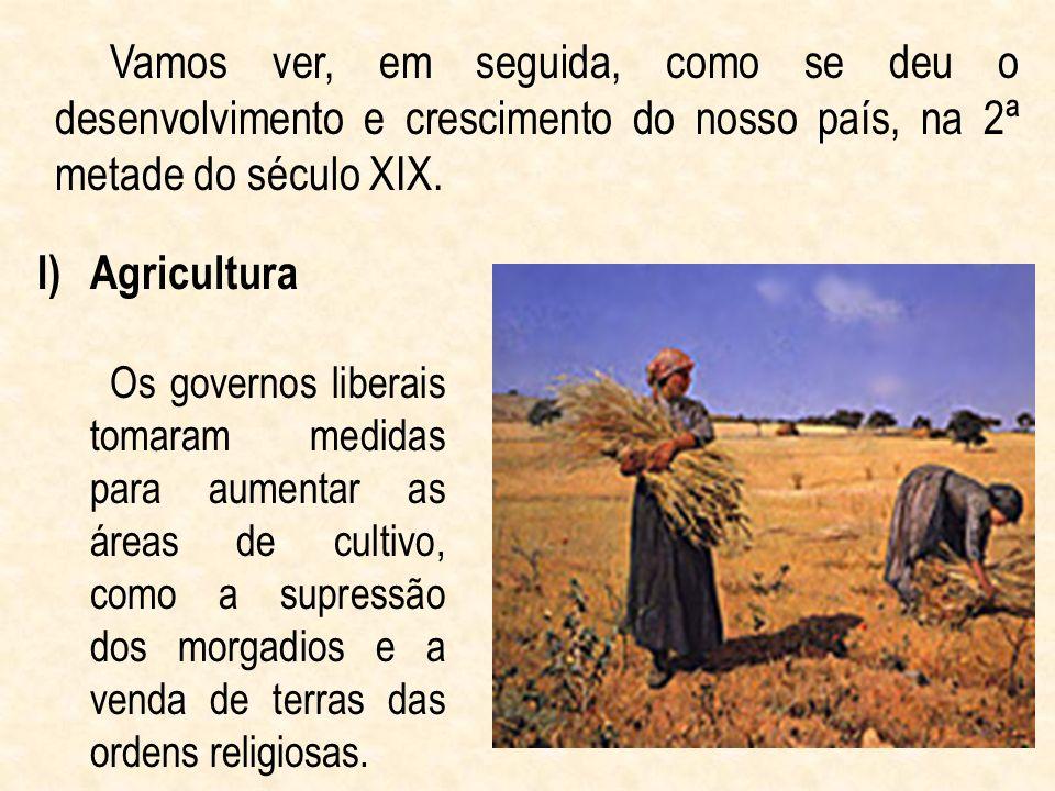 Vamos ver, em seguida, como se deu o desenvolvimento e crescimento do nosso país, na 2ª metade do século XIX. I)Agricultura Os governos liberais tomar