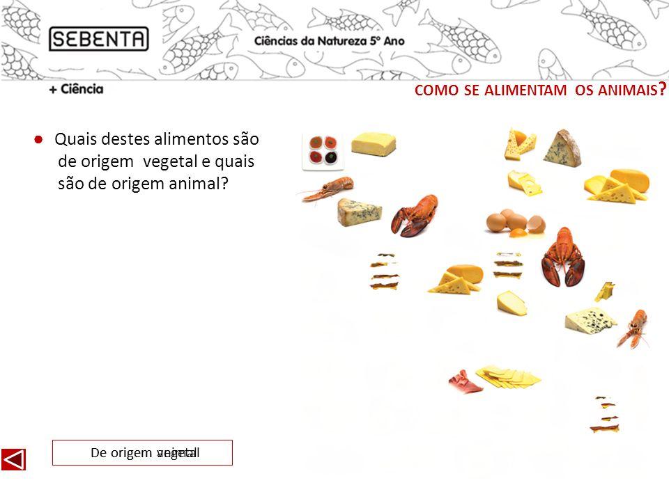 Quais destes alimentos são de origem vegetal e quais são de origem animal? De origem vegetalDe origem animal COMO SE ALIMENTAM OS ANIMAIS ?